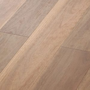 Spotted Gum - Brushed Matte